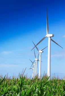 Turbina eolica nel paese