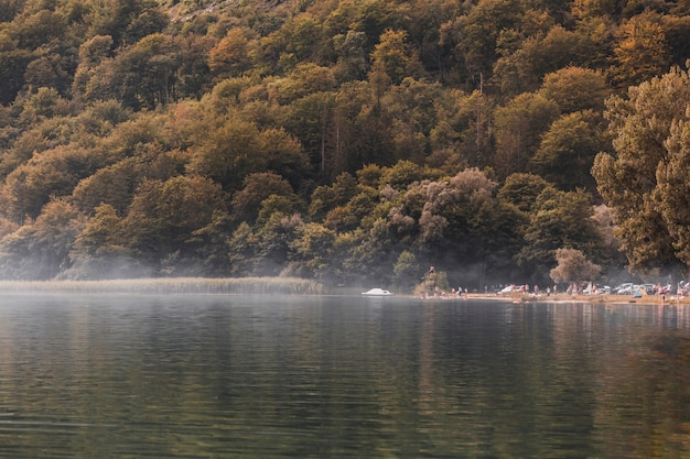 Turista ai margini del lago idilliaco vicino alla foresta verde