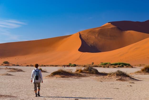 Turista che cammina sulle dune sceniche di sossusvlei, deserto del namib. avventura ed esplorazione in africa.