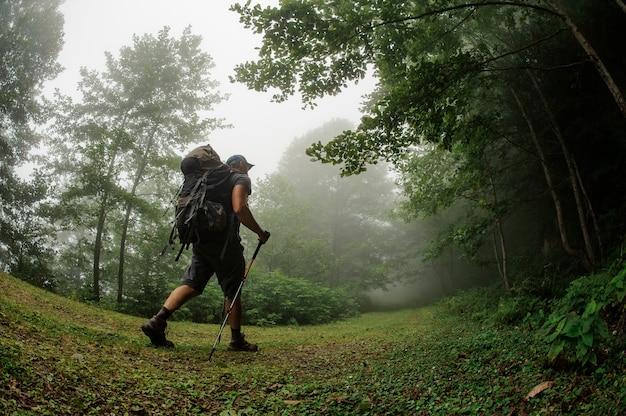 Turista maschio con lo zaino che cammina attraverso la foresta