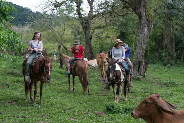 Turisti a cavallo in una fattoria, finca el cisne, honduras