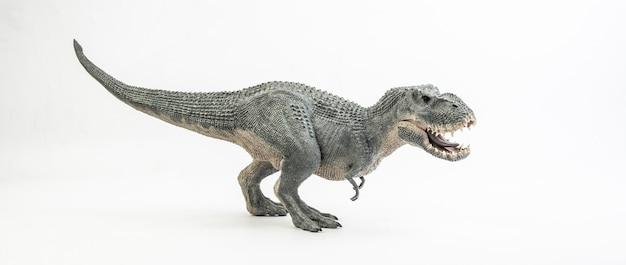Tyrannosaurus t-rex, dinosauro