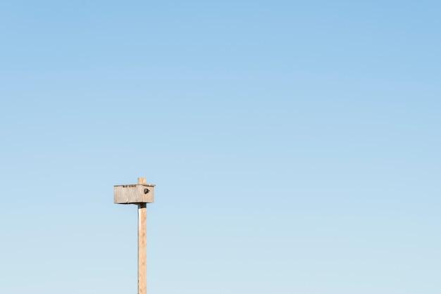 Uccello che dà una occhiata in birdhouse con cielo blu