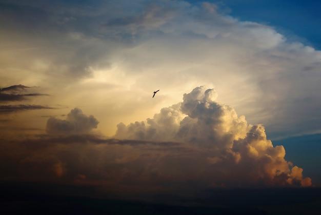 Uccello che vola nel cielo, una grande nuvola di perle, soffice nuvola come una montagna, una rondine che vola nel cielo in lontananza, luce del tramonto, la giornata finisce