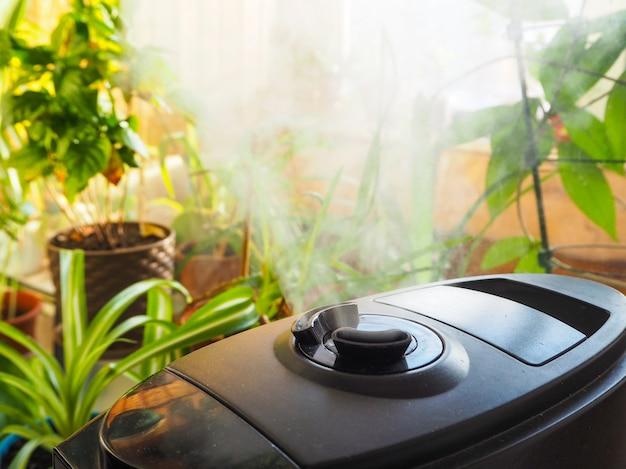Umidificazione per coltivazione di fiori. il vapore dell'umidificatore d'aria nella stanza
