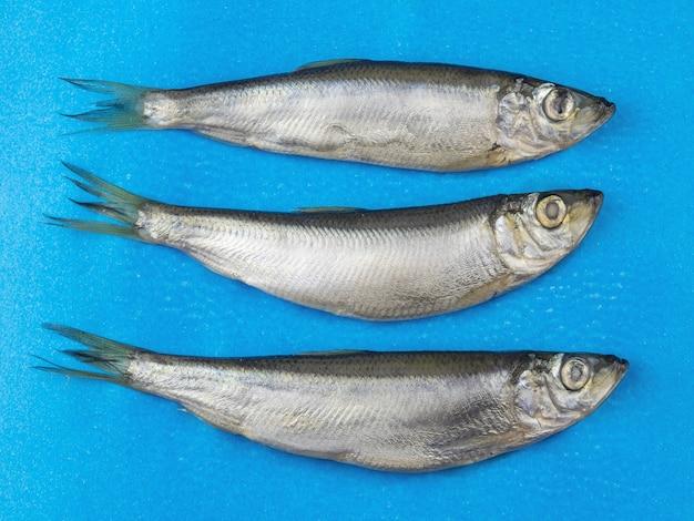 Un'aringa dei tre pesci del sale su una superficie blu