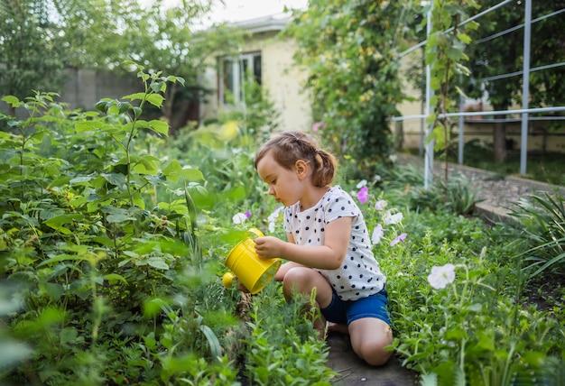 Un'assistente bambina è seduta in giardino e innaffia il raccolto con un annaffiatoio giallo