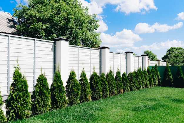 Un bel cortile verde con recinzione bianca prato e siepe verde in una giornata di sole