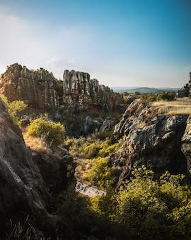 Un bellissimo paesaggio, un paradiso di rocce e piante