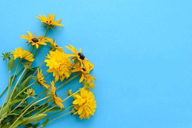 Un bouquet di bellissimi fiori gialli appena tagliati su sfondo blu. bellissimi fiori gialli estivi
