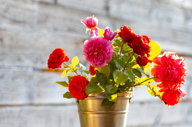 Un bouquet di rose fresche da giardino in un secchio di alluminio. giornata di sole, retroilluminazione.