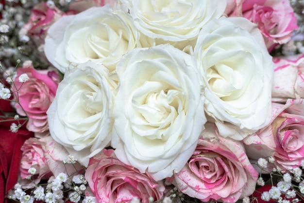 Un bouquet di rose maculate bianche, rosse e rosa, decorato con gypsophila.