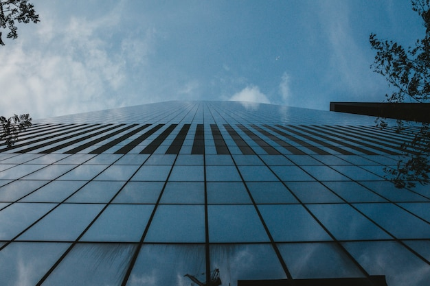 Un colpo di angolo basso di un edificio alto business a new york