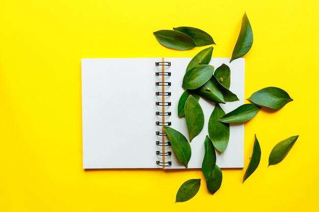 Un concetto di composizione di stile di vita minimalista. struttura delle foglie verdi di ruskus e pagine bianche con il posto per testo, su fondo giallo