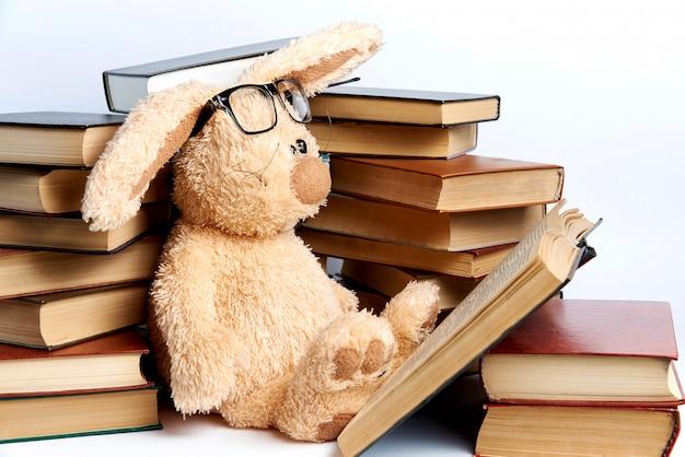 Un coniglio giocattolo morbido con gli occhiali si siede in pile di libri e legge un libro.