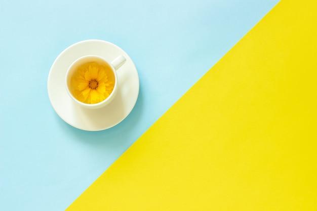 Un fiore giallo di coreopsis in tazza su fondo di carta giallo e blu