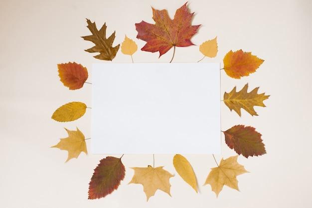 Un foglio di carta bianco con uno spazio di copia per le note