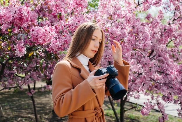 Un fotografo giovane e bella ragazza cammina e scatta foto contro un albero di mele in fiore.