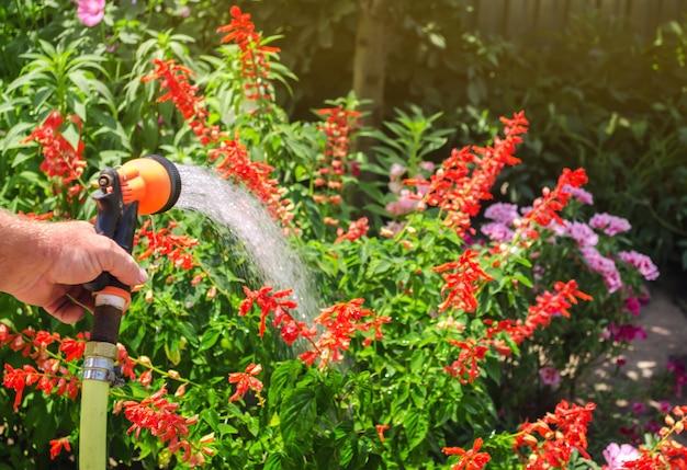 Un giardiniere con un tubo di irrigazione