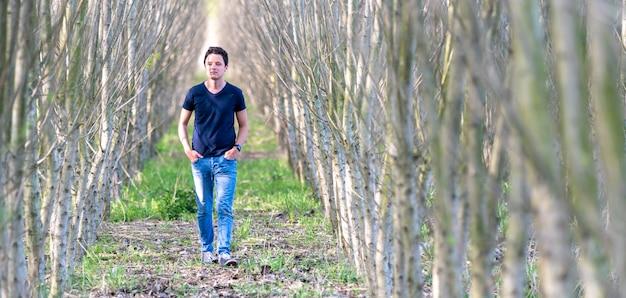 Un giovane cammina attraverso una fila di alberi in una foresta piantata da un uomo per ripristinare la natura