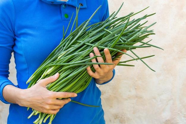 Un grande mazzo di cipolle verdi fresche