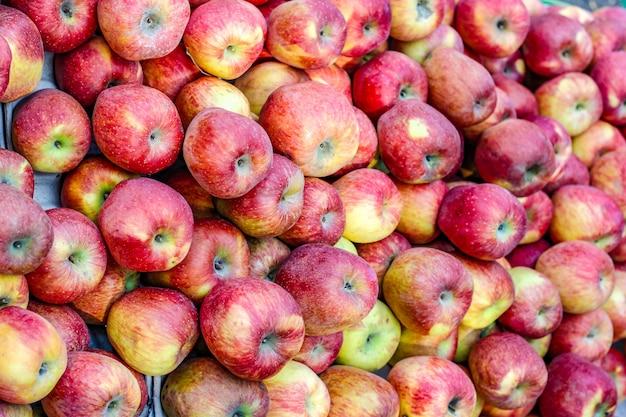 Un grappolo di mela matura intera