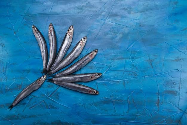 Un gruppo di acciughe galleggia su uno sfondo blu. pesce pescato