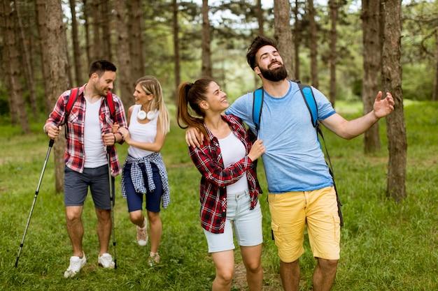Un gruppo di quattro amici che fanno un'escursione insieme attraverso una foresta