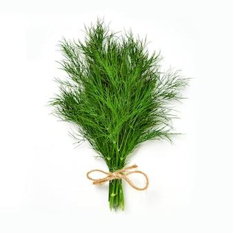 Un mazzo di aneto isolato. aneto verde fresco ed ecologico, lavorato a maglia con una corda