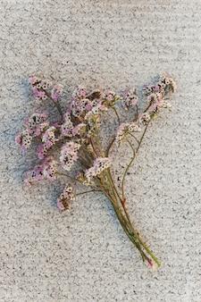 Un mazzo di piccoli fiori dentellare bianchi su una struttura concreta.