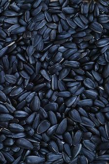 Un modello di molti semi di girasole fritti non trattati in un guscio nero.