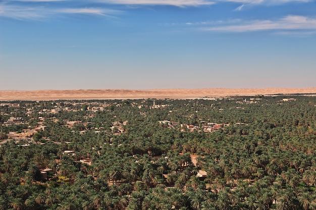 Un'oasi nel deserto del sahara, nel cuore dell'africa