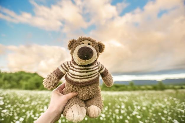 Un orsacchiotto che tiene la mano di un uomo su uno sfondo di un prato con margherite e il cielo