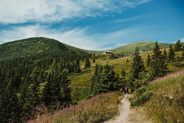 Un paesaggio fantastico con montagne e foreste