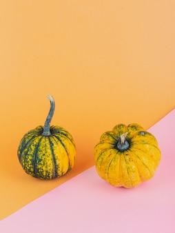 Un paio di piccole zucche su sfondo giallo e rosa