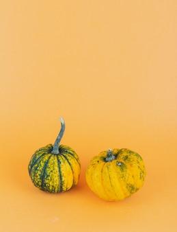 Un paio di piccole zucche su sfondo giallo