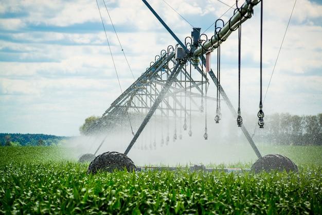 Un perno di irrigazione che innaffia un campo, bella vista