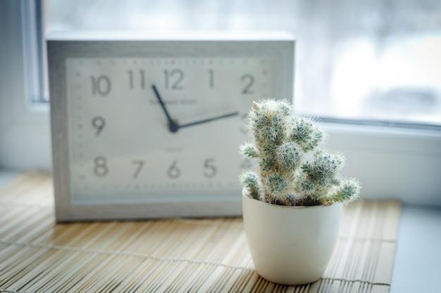 Un piccolo cactus fiorito di fronte all'orologio quadrato all'interno. colorato