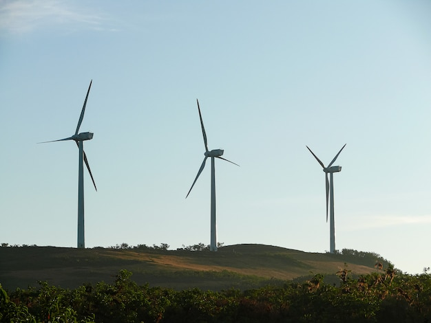 Un piccolo parco eolico