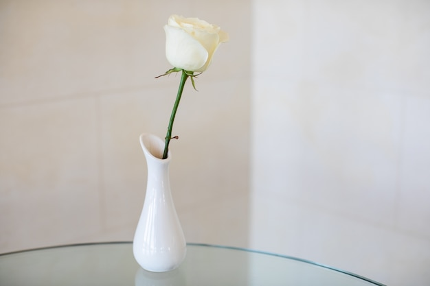 Un piccolo vaso laconico minimale in ceramica bianca con una rosa bianca sul tavolo di vetro