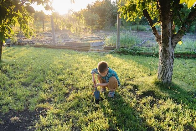 Un ragazzino carino sta piantando i germogli in giardino