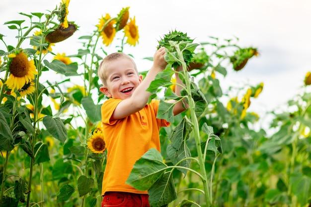 Un ragazzo felice sta in un campo con i girasoli in estate