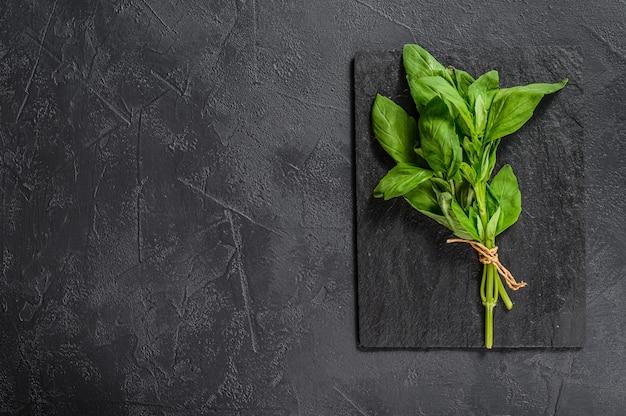 Un rametto di basilico. copyspace. condimento per verdure.