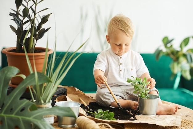 Un ritratto di un ragazzino carino seduto su un tavolo e trapiantare piante