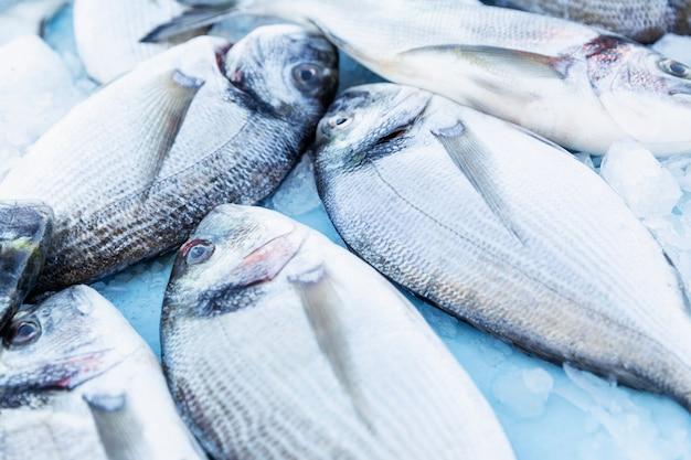 Un sacco di pesce fresco sul mercato. pescato fresco. vista dall'alto avvicinamento.