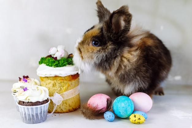 Un simpatico coniglietto maculato marrone accanto al pollo dipinto e alle uova pastello. coniglietto di pasqua