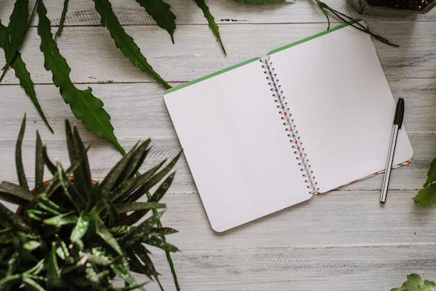 Un taccuino e una penna di carta aperti in bianco con molte piante in vaso ai precedenti di legno bianchi. flatlay copia spazio