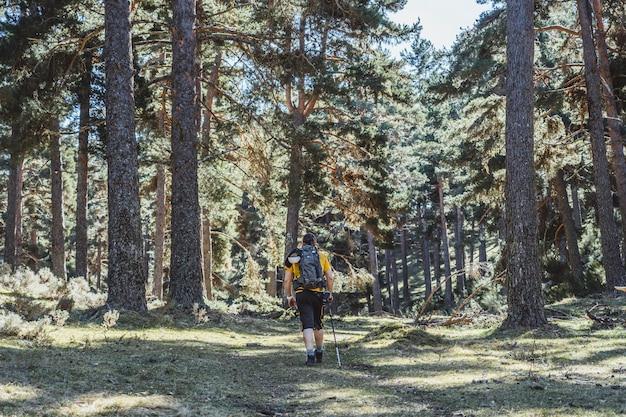 Un uomo fa turismo trekking camminando attraverso una foresta con uno zaino e una camicia gialla