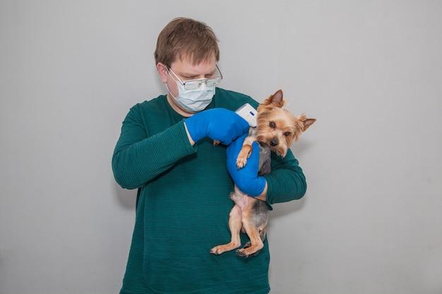 Un uomo in maschera e guanti con un termometro misura la temperatura di un cane