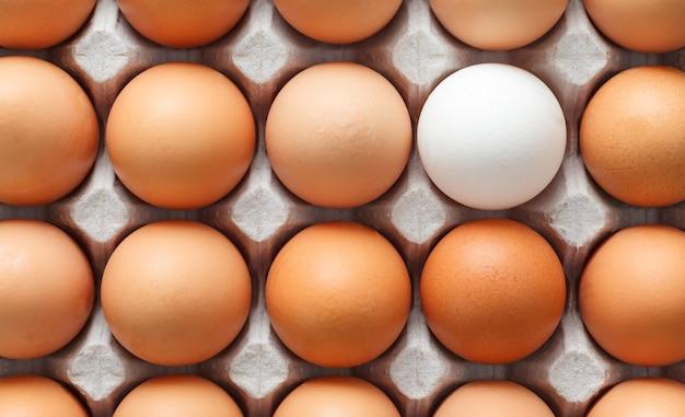 Un uovo bianco circondato da uova marroni.
